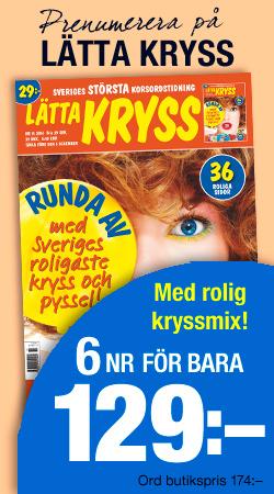 Banner_Kryss_LKR-1311