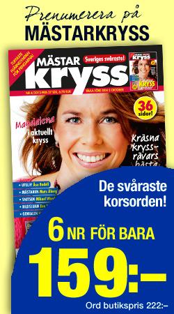 Banner_Kryss_MKR-1311