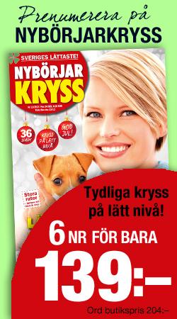 Banner_Kryss_NBK-1311