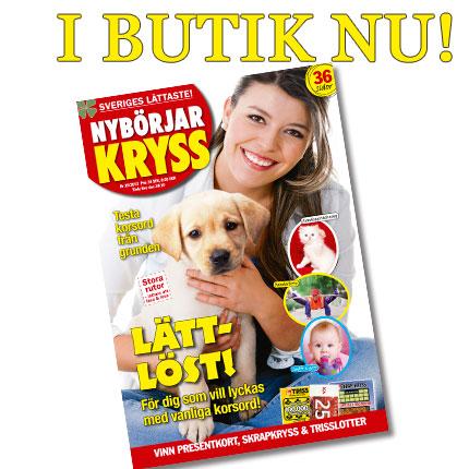 NBK1310-Butik