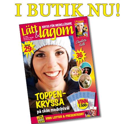 LOL3-ibutik