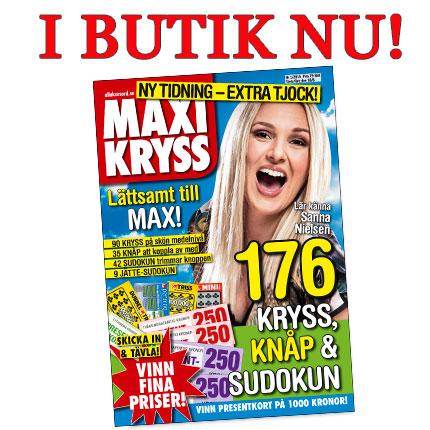 MAXI1_butik